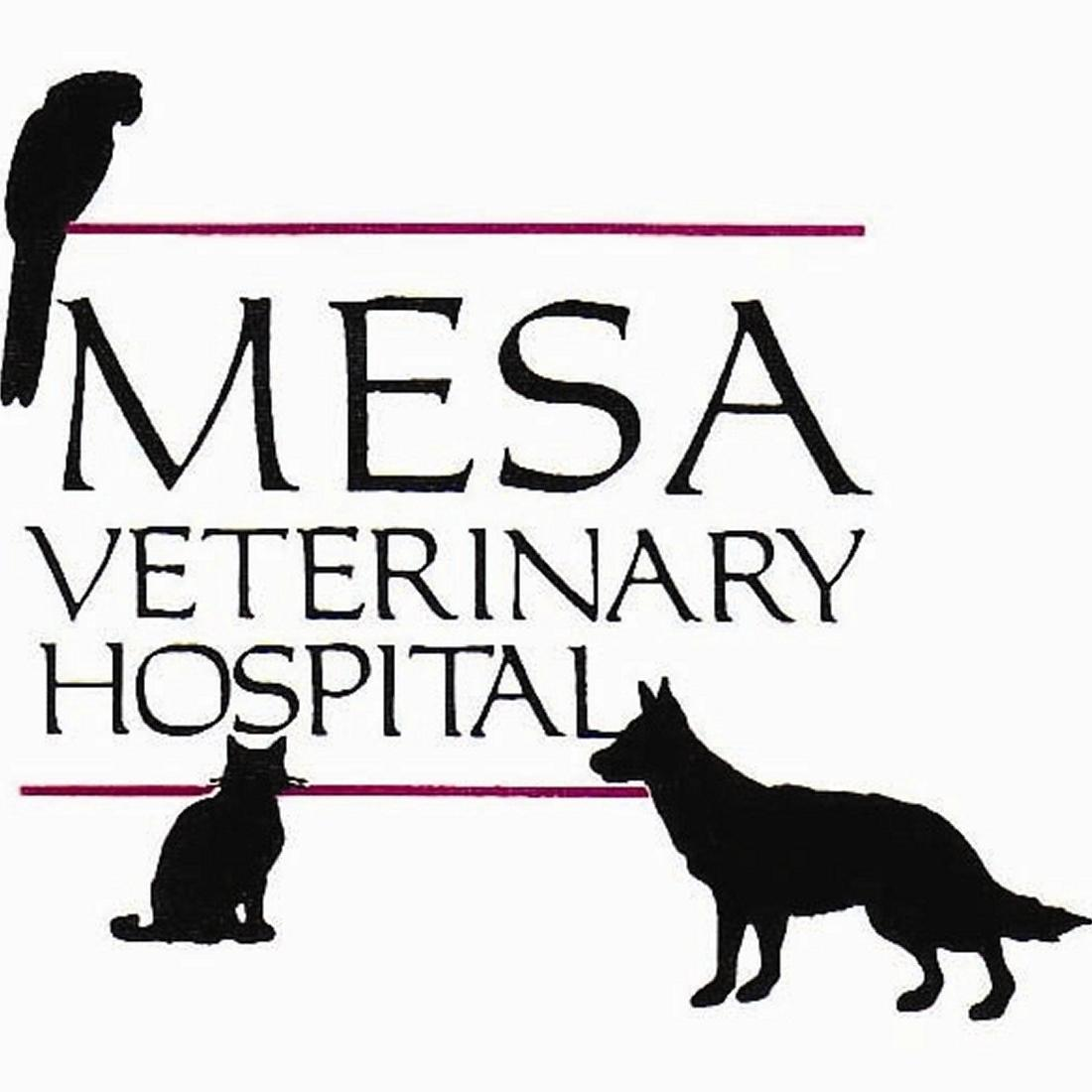 Mesa Veterinary Hospital